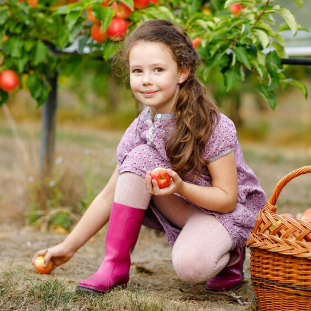 girl picking up apples